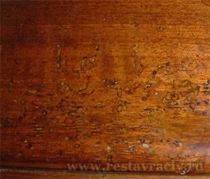 Шашель, мебельный жук, древоточец, короед.  Как удалить, избавиться, а затем реставрировать.